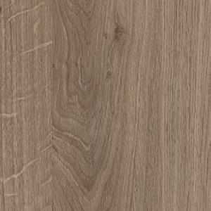 Denverio ąžuolas, rudas triufelis H1399ST10