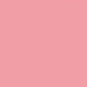Rausva, flamingo U363ST9