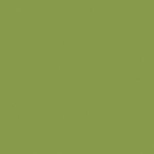 Žalia kivi U626ST9