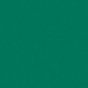 Žalia, smaragdo U655ST9