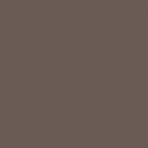Triufelio ruda U748ST9